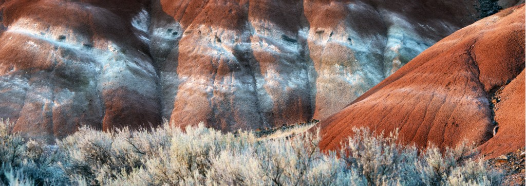 Painted Hills IX